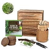 Kit de inicio de jardín, kit de cultivo de semillas de hierbas, caja de semillas completa y set de cultivo hecho a mano, hecho a mano, para cultivar hierbas en interiores para invernaderos, balcones