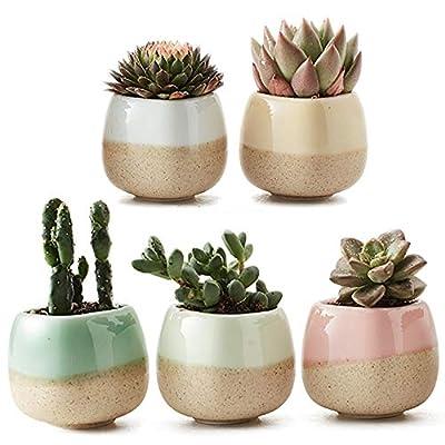 SUN-E 5 in Set 2.2 Inch Container Planter Ceramic Flowing Glaze Five Color Base Serial Set Succulent Plant Pot Cactus Plant Pot Flower Pot Perfect Gift Idea