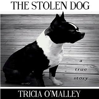 The Stolen Dog audiobook cover art