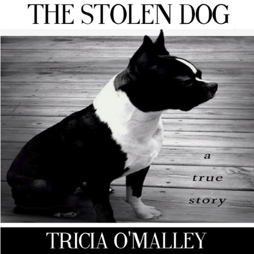 The Stolen Dog audiobook cover art
