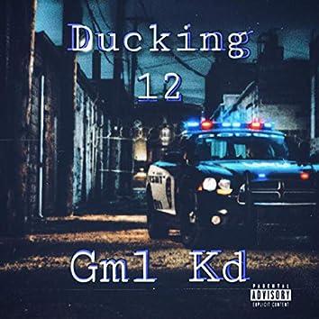 Ducking 12