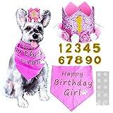 Bipy Krone für Hund zum Geburtstag, Hut, rosa, blau, wiederverwendbar, für Katze, Hund, Kopfbedeckung, entzückende Mütze, für Welpen, Kätzchen, mit Blume, Kopfschmuck für Haustier, Kostüm