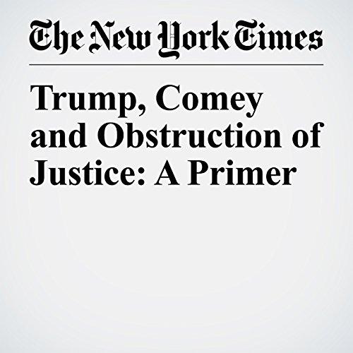 Trump, Comey and Obstruction of Justice: A Primer copertina