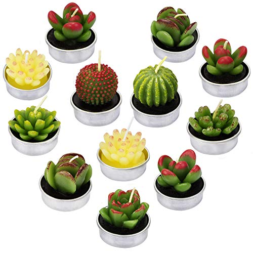 LA BELLEFÉE Cactus Tealight Candles Succulent Cactus Candles Gift Set Handmade Delicate Smokeless Cute Green Plant for Party Weddi ng Spa Home Decoration Gifts 12 Packs Gift