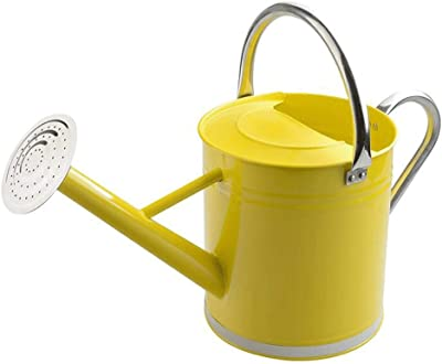 Plant Sprinkling Pot Mini Metal Iron Watering Can, Iron Pitcher Flower Vase, Garden Flower Pot Plant Planter Home Decoration Watering Can (Color : Yellow 5.5L)