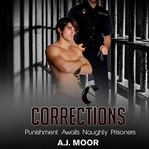 Corrections audiobook cover art