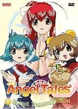 Angel Tales: Sweet Transmigration - Volume 1