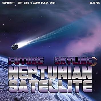 Neptunian Satellite