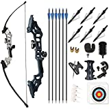 Monleap Archery 51' Takedown Recurve Bow and Arrows Set for Adults Metal Riser Longbow Kit Right Hand Straight Bow for Beginner Hunting Shooting Practice 30 40 50lb (Silver 50lb)