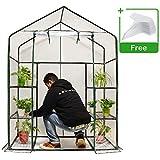 Quictent Mini Walk-in Greenhouse, 3 Tiers 6 Shelves Plants Garden...
