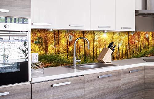 DIMEX LINE Küchenrückwand Folie selbstklebend SONNIGER Wald | Klebefolie - Dekofolie - Spritzschutz für Küche | Premium QUALITÄT - Made in EU | 260 cm x 60 cm