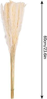 Wuudi Lot de 30 herbes de pampa séchées naturelles - Pour décoration d'intérieur