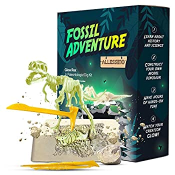 ALLESSIMO Fossil Adventure - Ancient Glow Rex Fossil Dig Kit Dino Glow in-The-Dark Complete Archeology Excavation Kit for Kids Dig and Assemble Your Own Glowing T.Rex Dinosaur for Boys and Girls