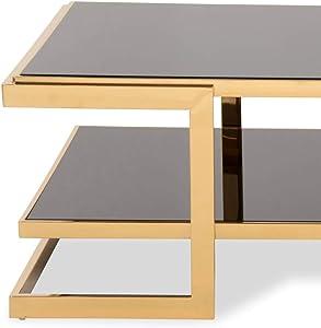 Homy Couchtisch Glas Glasplatten Schwarz Ablage Metallgestell Edelstahl Gold - Maggy