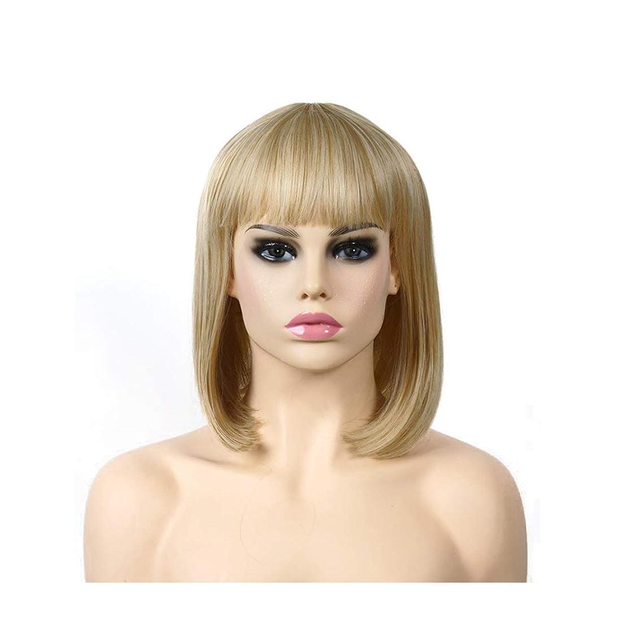 練習した貼り直す遺産Koloeplf 高温シルクヨーロッパとアメリカのファッションショルダーウィッグゴールドロングストレートヘアウィッグ (Color : 金色)