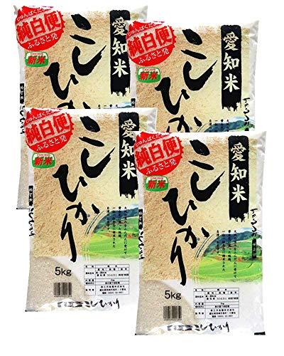 愛知県産 白米 コシヒカリ 20kg(5kg×4)令和2年産 こしひかり 白米 お米