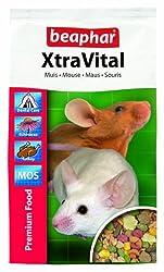 Mice food