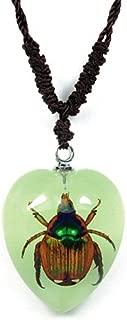 jewel beetle jewelry