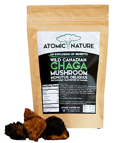 4oz Raw Organic Wild Chaga Mushroom Tea Chunks - 100% Natural Hand-Harvested Canadian Forest Chaga Superfood, Healthy Immune System Booster & Antioxidant, Perfect Size for Brewing