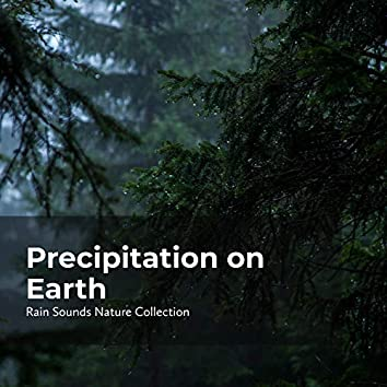 Precipitation on Earth