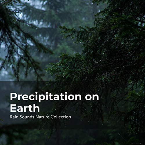 Sleepy Rain, Rain Sounds Nature Collection & ASMR Rain Sounds