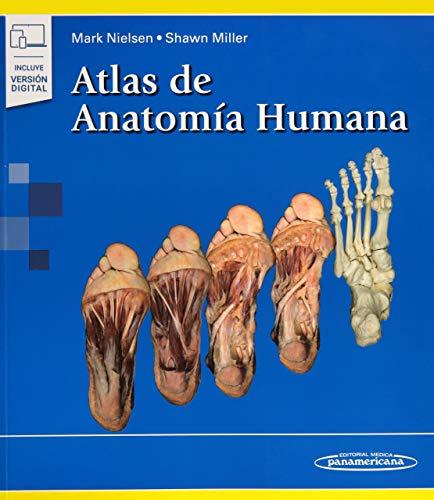 Atlas de anatomia humana (incluye version digital)