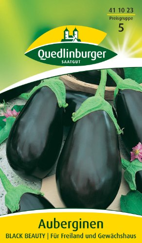 Aubergine, Black Beauty