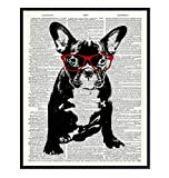 French Bulldog in Red Glasses - Dictionary Wall Art Print - 8X10 Photo Print - Cool Home Decor or Gift for Animal or Dog Lover, Veterinarian, Vet Office – Unframed Poster Picture