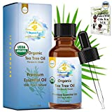 Best Tea Tree Oils - Organic Tea Tree Essential Oil, 100% Pure USDA Review