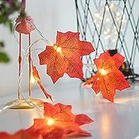 メープルリーフフェアリーライト、メープルリーフフォールデコレーションストリングライト、8フリッカーモードのLED銅線ライト、ガーデン用LEDカーテンライト、クリスマス
