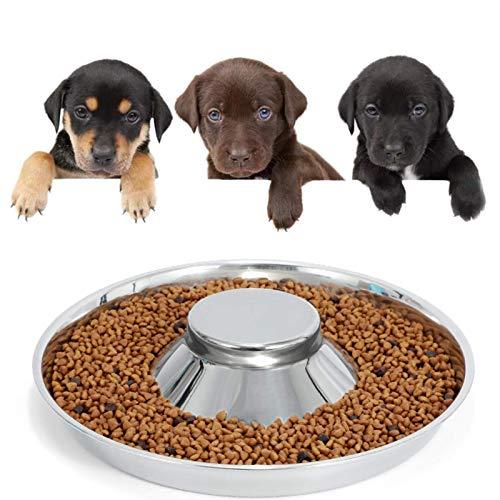 WERFORU Edelstahl Hundenäpfe für Welpen, Welpenfütterungsschüssel zum Füttern von Futter und Wasser Entwöhnung Haustier Futterschale Wasserschale für kleine Hunde / Katzen / Haustiere,M,Silber