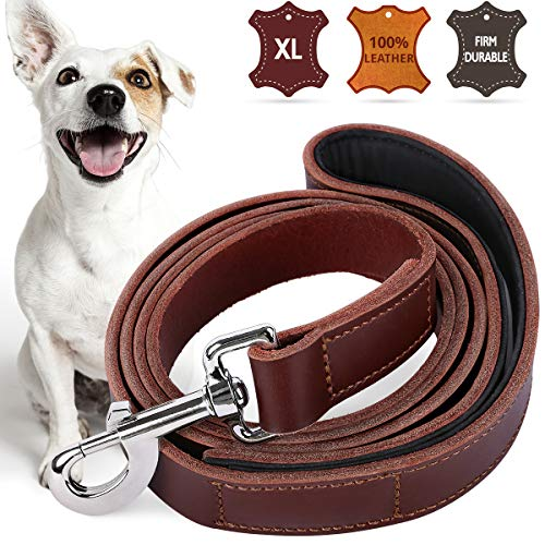Pawzone Leather Dog Leash Pet Training Leashes for Large and Medium Dogs with Anti-Slip Handle