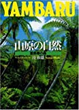 山原の自然―亜熱帯の森