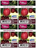 Better Homes and Gardens Fresh Orchard Apples Wax Cubes - 4-Pack