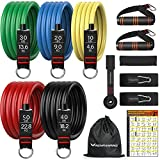 RENRANRING Resistance Bands Set - Resistance Exercise Band with Handle, Door Anchor Attachment, Elastic Tube Bands for Exercise, Gym Equipment for Muscle Training, Physical Therapy, Home Workout