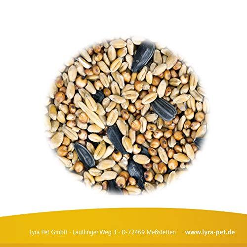 25kg Streufutter Vogelfutter Meisenfutter Wildvogelfutter Premium Mischung - 2