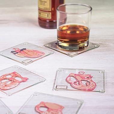 Anatomic Heart Specimen 6-Piece Coaster Set