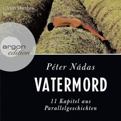 Vatermord audiobook cover art