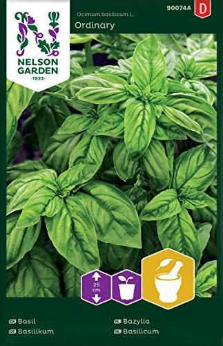 Basilikum Samen - Nelson Garden Küchenkräuter - Basilikum Kräutersamen (300 Stück) (Einzelpackung)