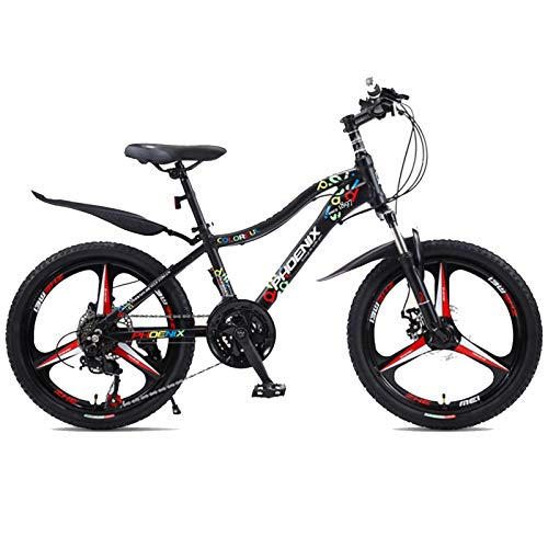 Axdwfd Kids Bike 20 Inch, Children's Bicycle, Bicycle with Mudguard and Stand, Suitable for 9-14 Years Old, 4 Colors Bicycle (Color : C)