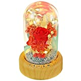 Mother's Day Red Rose Night Light - SWEETIME Real Eternal Rose in Glass Dome, Preserved Rose Flower Lamp with Bluetooth Speaker,Forever Flowers Gift for Mom, Wife, Girlfriend on Mother's Day