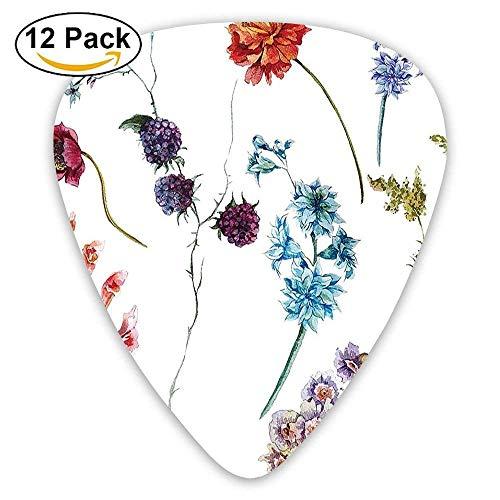 Acuarelas, flores silvestres, hojas, margaritas, lavandas, ramas de primavera, jardín, guitarra, selecciones, 12 / paquete.