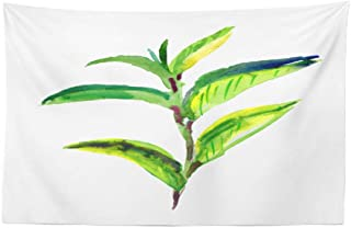 ONELZ Colorful Tree Watercolor Tapestry, Wall Hanging Tapestry, Green Tea Leaves Watercolor Leaf Tree Decor Collection Room 30 L x 45 W Green Tea Leaves 06