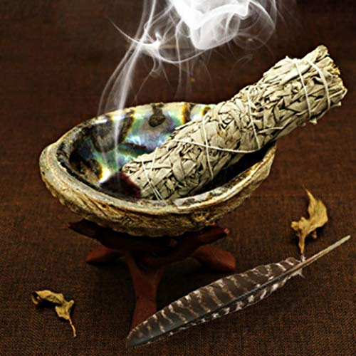 Abalone Shell Smudging Kit, With Feather, Wooden Stand, Abalone Shell, for Burning, Home Decoration, Incense, 250x170x50 mm (Shell+Stand+Wand)