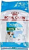 Royal Canin/Croquettes Chiot Petite Race/Mini Junior - Sac de 8 Kg