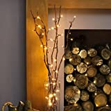 Festive Lights Branches Lumineuses LED Décoratives - 5 Branches Naturelles de Saule - 50 LED Éclairage Blanc Chaud - 90cm