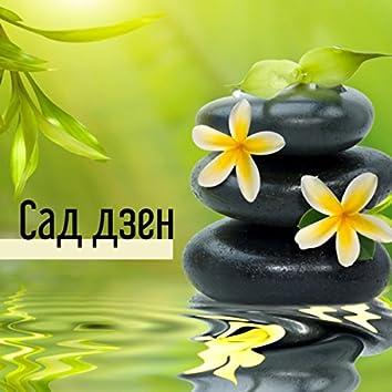 Сад дзен - Волшебные звуки Азии, Успокаивающая восточная музыка, Дзен-релаксация и медитация
