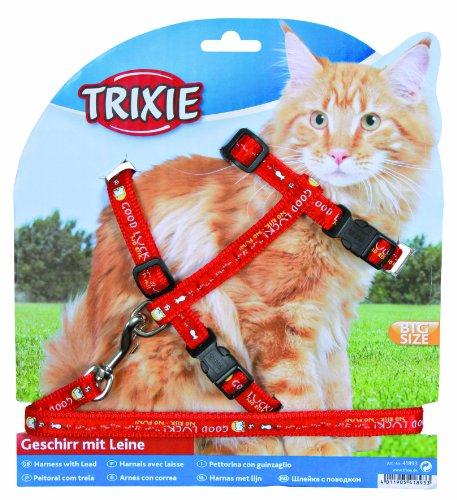 Trixie 41893 Katzengeschirr mit Leine, XL, Nylon, 34–57 cm/13 mm, 1,20 m