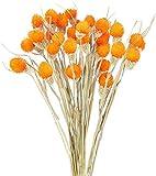 ZWR 30 Tallos Craspedia Naranja Flores Seca Artificial Decoracion para Hogar Boda Fiesta Jarrones Arregalos Florales Mesa Balcon Terraza Damajuana Escritorio Dormitorio (Color : Orange)