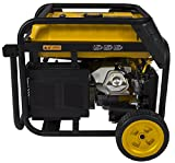 Photo #6: Firman Dual Fuel Generator H05751 7100/5700 Watt Electric Start Propane and Gas Generator